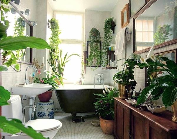 Pflanzen im Badezimmer badewanne spüle spiegel