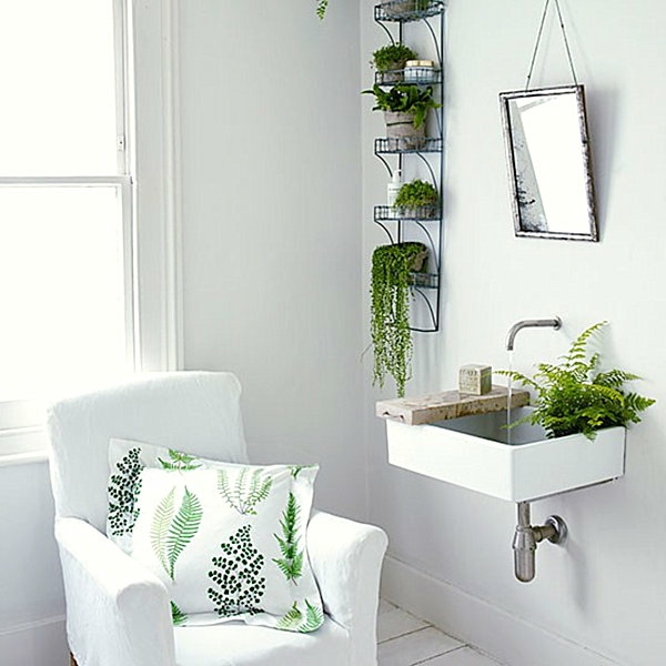 pflanzen im badezimmer die besten vorschl ge f r sie. Black Bedroom Furniture Sets. Home Design Ideas