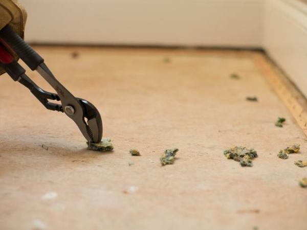 teppichboden entfernen materialien klammer