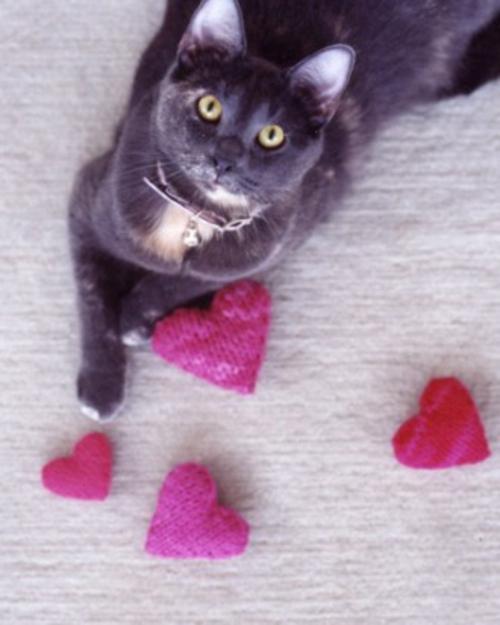 frische DIY Ideen zum Valentinstag gestrickt rosa herzen