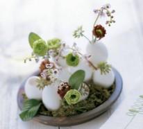 Osterdeko basteln – kreative Vasen und Blumentöpfe aus Eierschalen