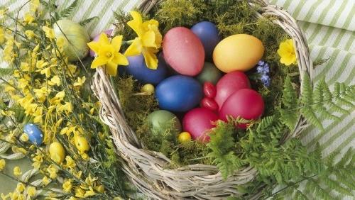 osterkorb basteln bemalte eier weidenkorb