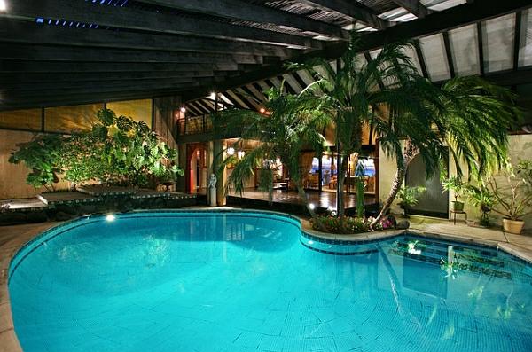 schwimmbecken zu hause oval palmen