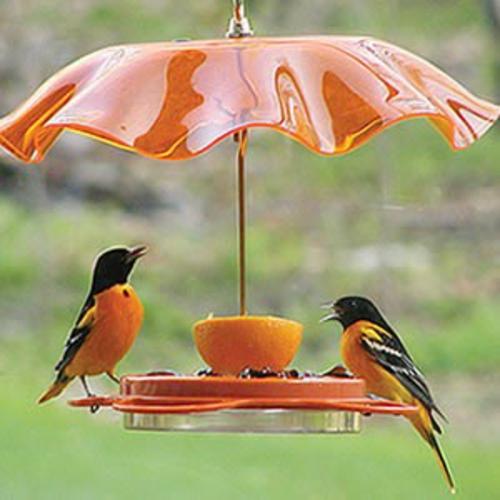 vogel futterhaus selber bauen plastik orange