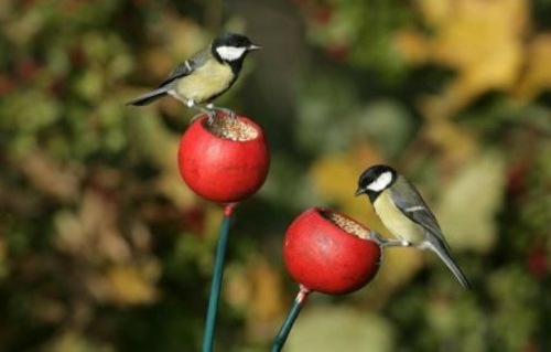 vogel futterhaus selber bauen rote äpfel
