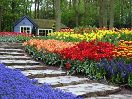 Bunte Gartengestaltung  Gartendeko fußweg stufen