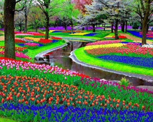 Gartengestaltung und Gartendeko niederlande wunderschön