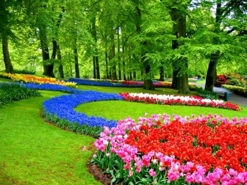 Bunte Gartengestaltung Gartendeko rote tulpen blumenbeet