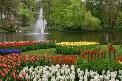 Bunte Gartengestaltung und Gartendeko