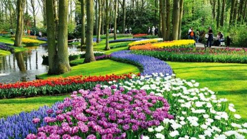 Bunte Gartengestaltung und bäume
