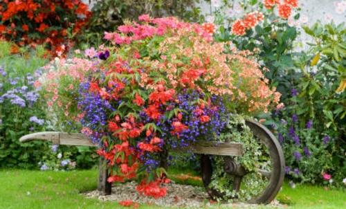 Coole Gartendekoration blumen bunt prächtig holz rad