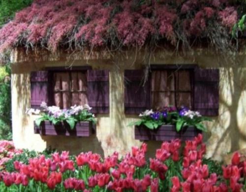 Gartendeko tulpen rosa dach haus