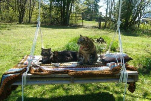 DIY Schaukel aus Europaletten auflagen katzen haustiere