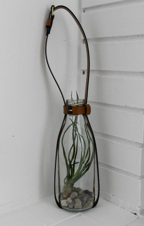 DIY gurte pflanzen steine