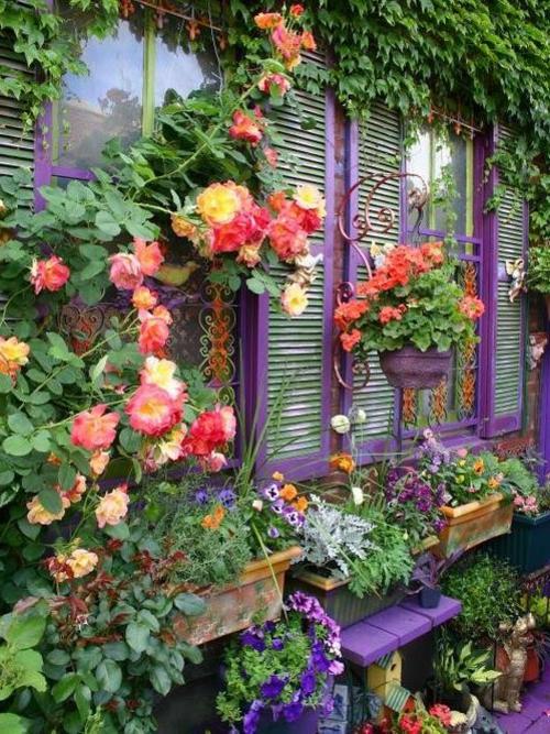 Ihre Gartendeko und Ihr Gartenzubehör fenster laden lila blumen