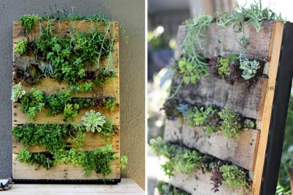 Möbel aus Europaletten basteln sukkulenten pflanzen