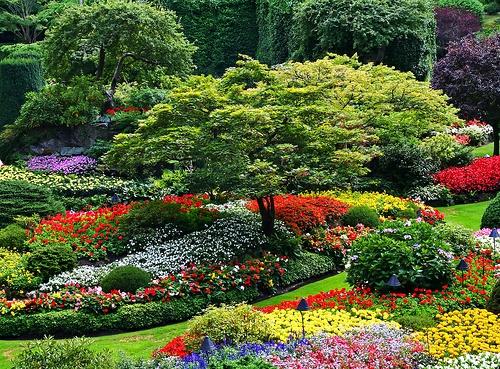 Perfekt Schöner Garten Elegant Arrangiert Gartengestaltung Pflanzen