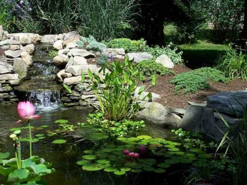 Schöner Garten elegant arrangiert gartengestaltung wasser