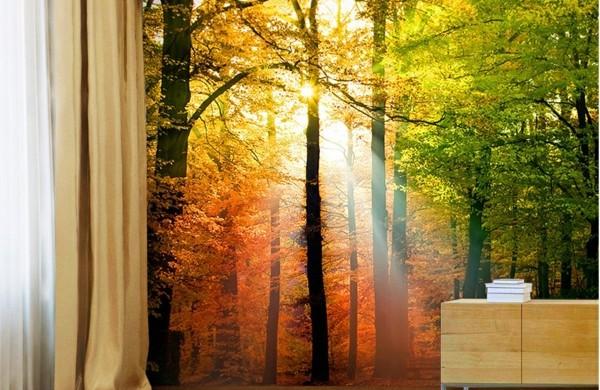 Wandgestaltung-mit-Fototapeten-sonnig-landschaft-gardinen