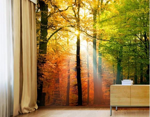 Wandgestaltung Fototapeten sonnig landschaft gardinen