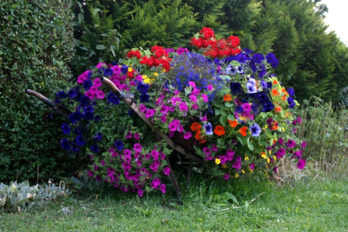 erfolgreiche Gartengestaltung rot pflanzenart bunt blumen