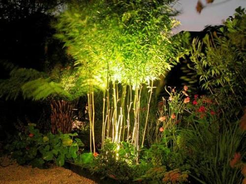 garten außenbeleuchtung tipps ideen pflanzen bambus