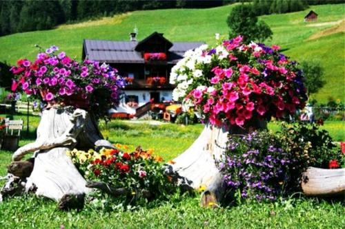 baumstumpf im garten gestalten – actof, Gartenarbeit ideen
