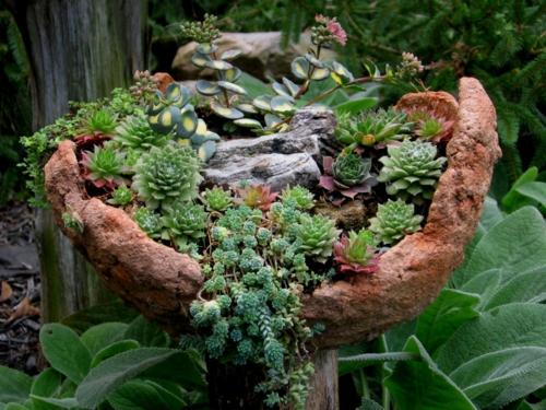 Gartengestaltung mit winterharten pflanzen fu weg pflasten for Gartengestaltung mit pflanzen