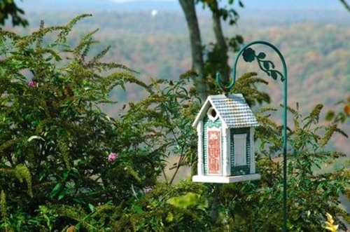 schicke vogelhäuser spitzdach grün
