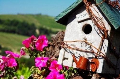 schicke vogelhäuser spitzdach pinke blumen