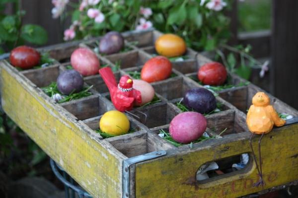 ostereier-natürlich-färben-pflanzensud