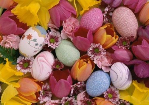 Ostereier frühling blumen tulpen bunt