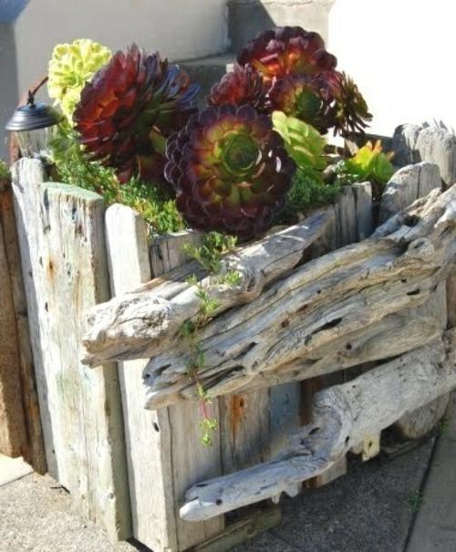 sukkulenten holz pflanzgefäß rustikal aussehen wetterfest