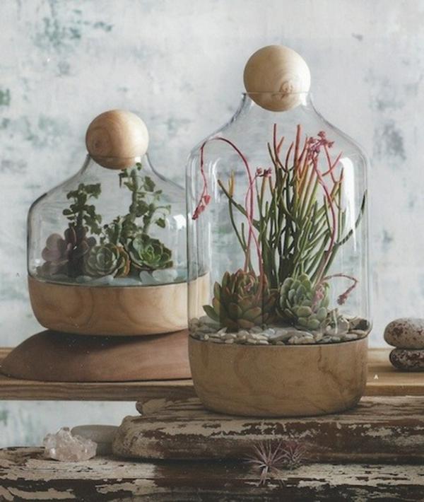 terrariumidee schöne gläser mit pflanzen
