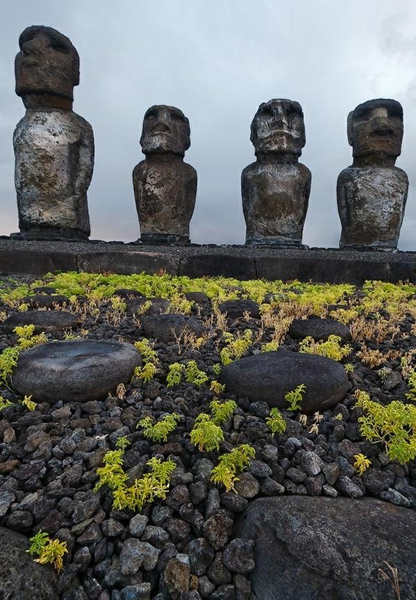 steine skulpturen chile reisen Die erstaunlichen Osterinseln