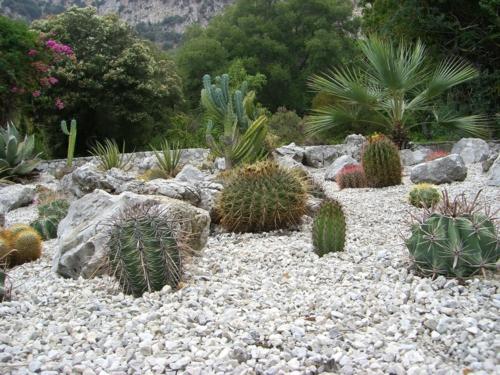Gartengestaltung-mit-Kies-dürrgebiet