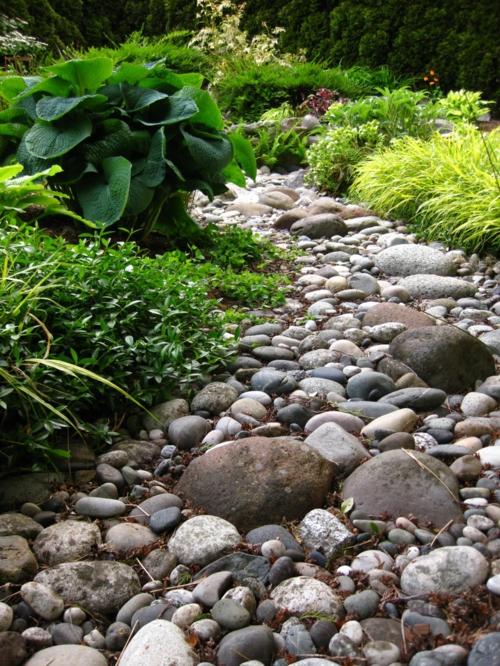 dicht pflanzen Gartengestaltung mit Kies gebüsche