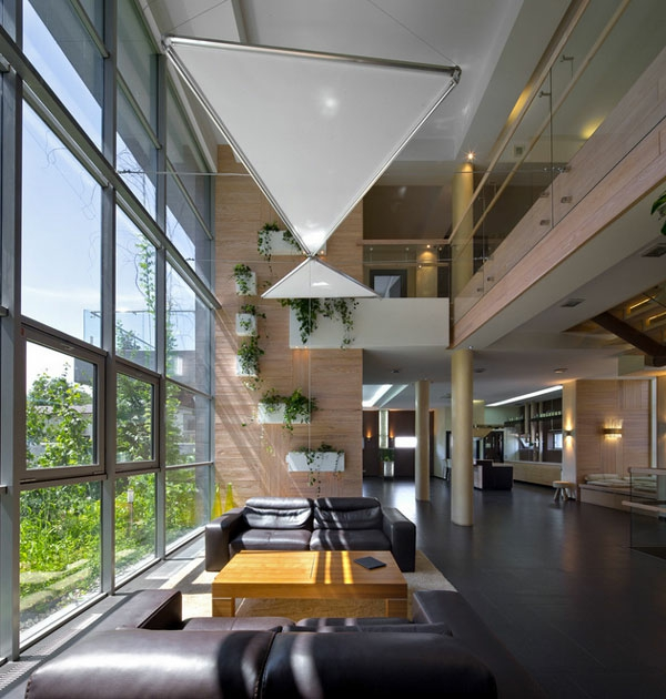 Hängende Zimmerpflanzen und Balkonpflanzen modern inneneinrichtung