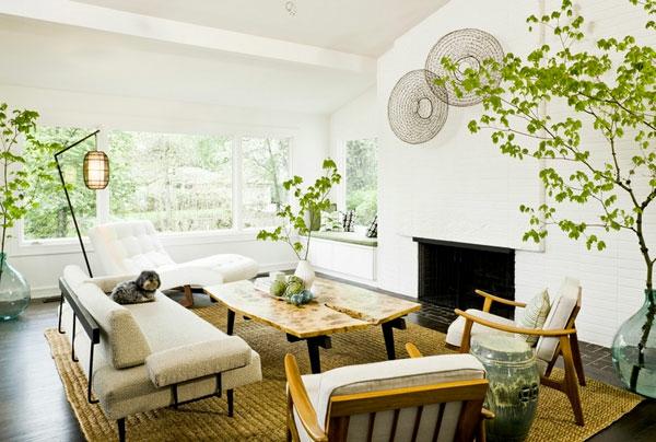 Hängende Zimmerpflanzen und Balkonpflanzen