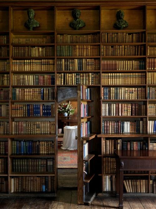 einrictung offen Bücherschrank bücherregale wohnen schön gemütlich dunkel