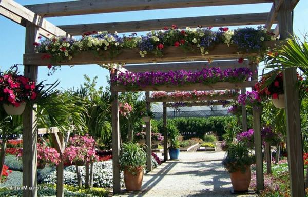 Pergola bauen modern sitzecke gartenlaube pflanzen blumen
