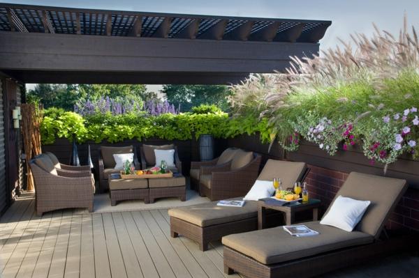 pflanzen bunt blüten Sichtschutz im Garten beleuchten