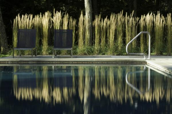 Beleuchten Pool Modern Sichtschutz Im Garten Ornamentale Gräser