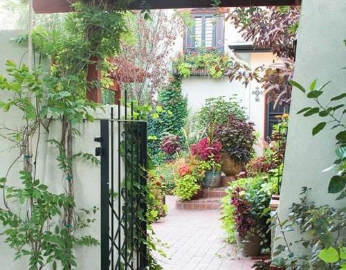 vorgarten ideen steine kiesel blumen pflanzen vorgartengestaltung