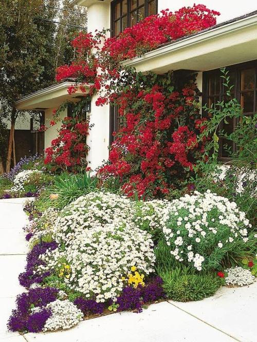 ▷ 1001+ Fabelhafte Bilder Zur Vorgartengestaltung Gartenideen Fr Vorgrten