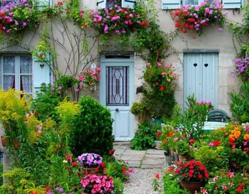 kiesel blumen pflanzen fassade bilder zur vorgartengestaltung vorgarten ideen