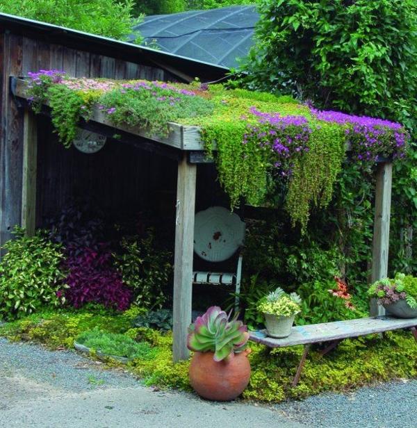 dachgarten gestaltungsideen übertöpfe pflanzen