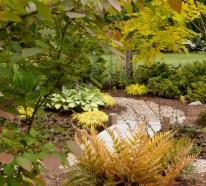 Gartengestaltung – die wunderbare Erscheinung vom Rotschleierfarn