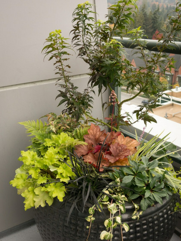 garten gestalten pflanzen im übertopf