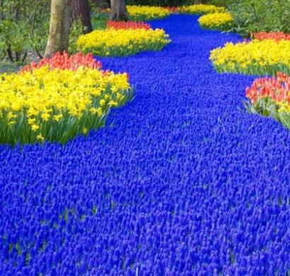 Garten blumen gestaltung  111 Gartengestaltung Bilder und inspiriеrende Ideen für Sie